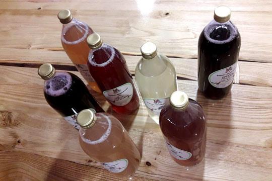 Désaltérez-vous avec les boissons savoureuses de Mat&Élo, fabriquées en Ardèche avec rien que des fruits et des plantes aromatiques.